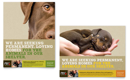 Animal Shelter & Pet Adoption - Poster Template