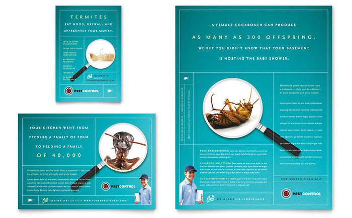 pest control services flyer ad template word publisher. Black Bedroom Furniture Sets. Home Design Ideas