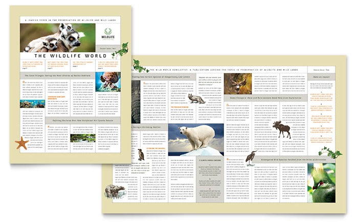 Nature & Wildlife Conservation Newsletter Template - Word & Publisher