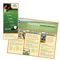 Golf Instructor & Course - Brochure Template