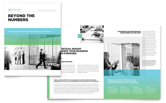 Auditing Firm Brochure Template Word Publisher